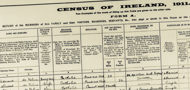 1901 Irish Census