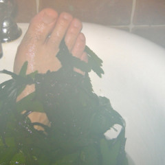Taking a Seaweed Bath in Strandhill, County Sligo
