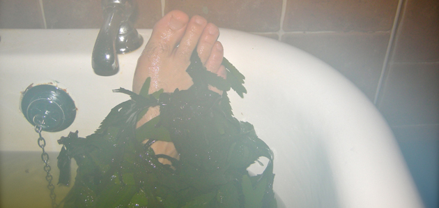 Voya Seaweed Bath - Strandhill, County Sligo, Ireland