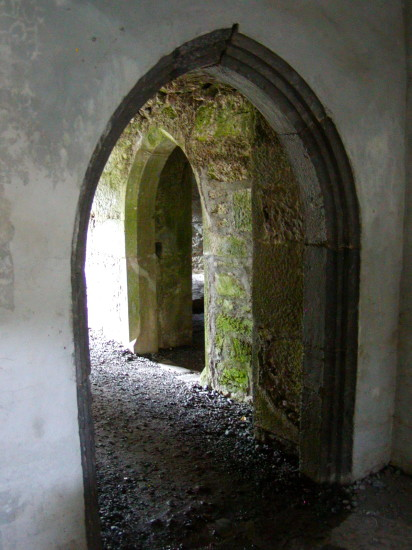 Visit Muckross Abbey on the Ring of Kerry to see its Gothic arches and the tree growing inside. Photo by Georgia Beaverson.