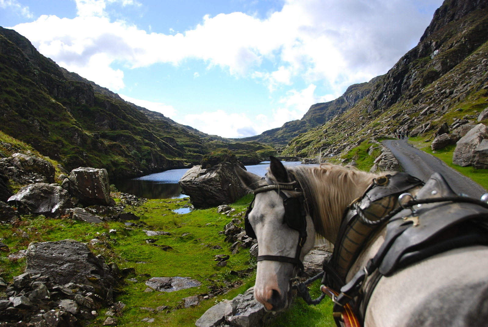 Disability Access in Ireland - Irish Fireside Travel and Culture