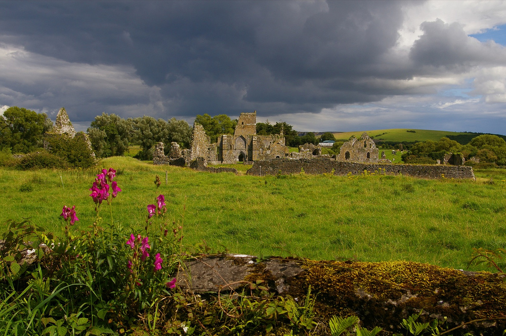 Athassel Priory, County Tipperary