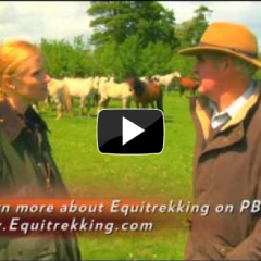 Equitrekking in the Irish Countryside