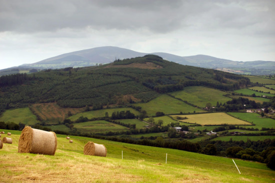 Kilmacoliver Hill on the Kilkenny and Tipperary Border