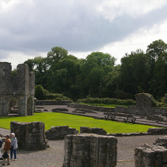 Mellifont Abbey, County Meath