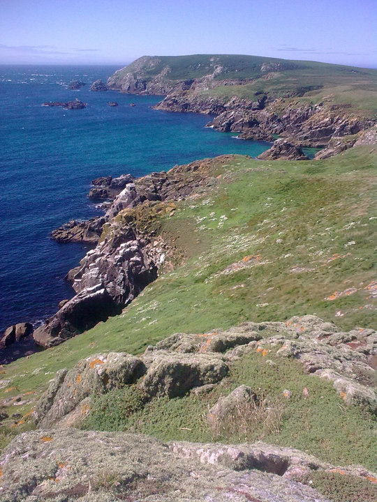 Cliffs on Great Saltee