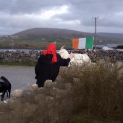 The Tale of Three Ladies, a Rental Car, and a Pesky Irish Goat