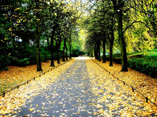 St Stephen's Green - Photo by Samuel! PereZ