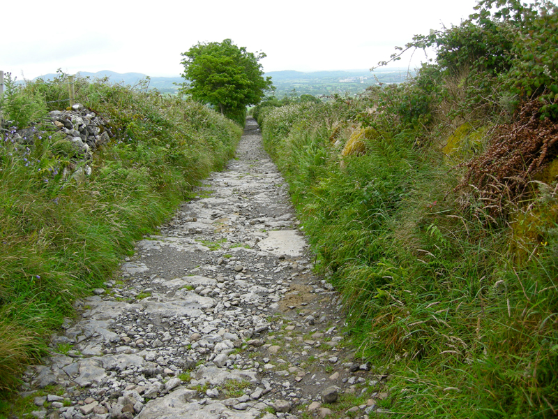 The path up Knocknarea.