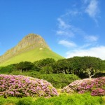 Benbulben in June