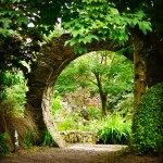 Through the wall at Knockpatrick Gardens, Co Limerick.