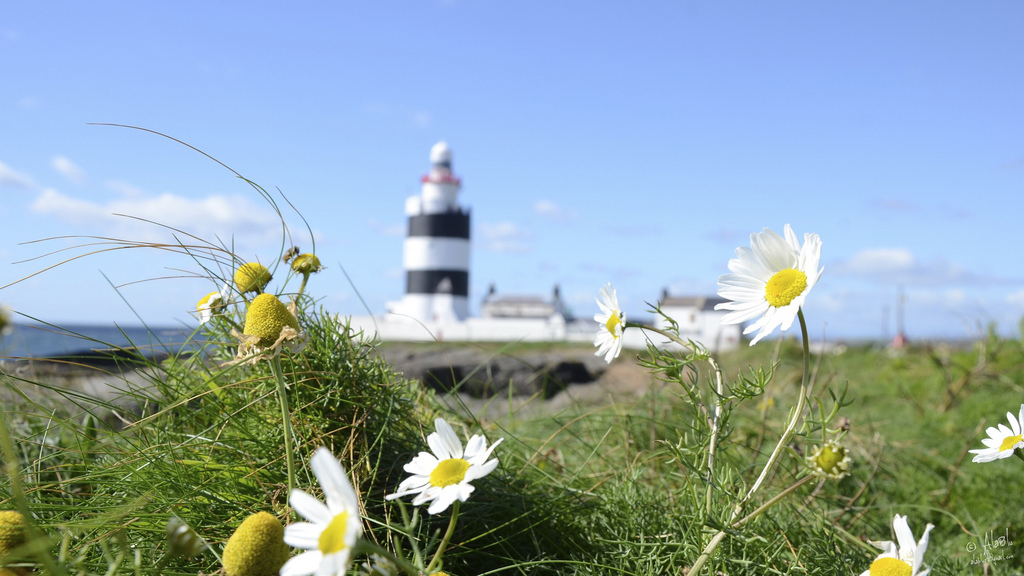 Hook Head Light House, Co Wexford
