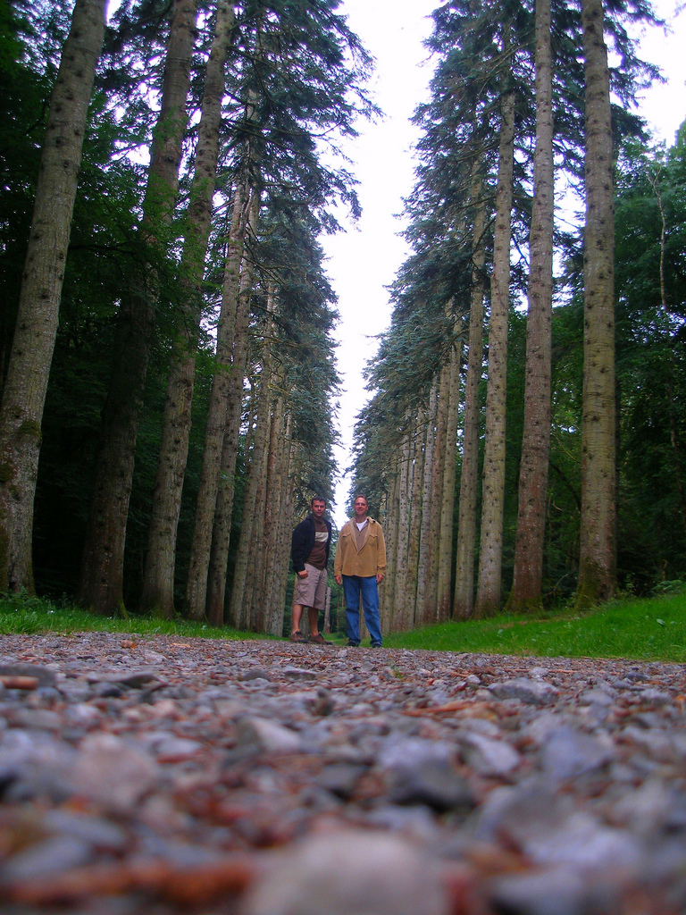 Corey and me along Europe's longest Monkey Puzzle Tree Avenue at Woodstock Gardens in County Kilkenny.