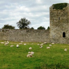 Postcard from Ireland: Kells Priory, County Kilkenny