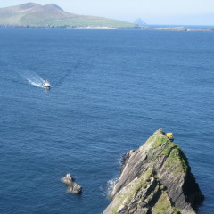Postcard from Ireland: Along Dingle's Slea Head Drive and the Great Blasket Island