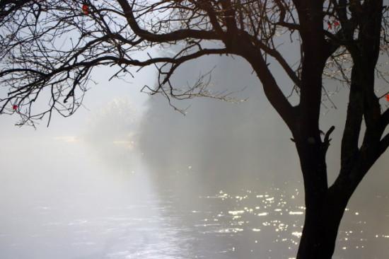 St Mullins misty