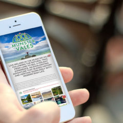 #154 Using Your Smartphone and Tablet in Ireland – Audio