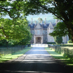 A Photo Tour of Muckross House and Sites Around Killarney
